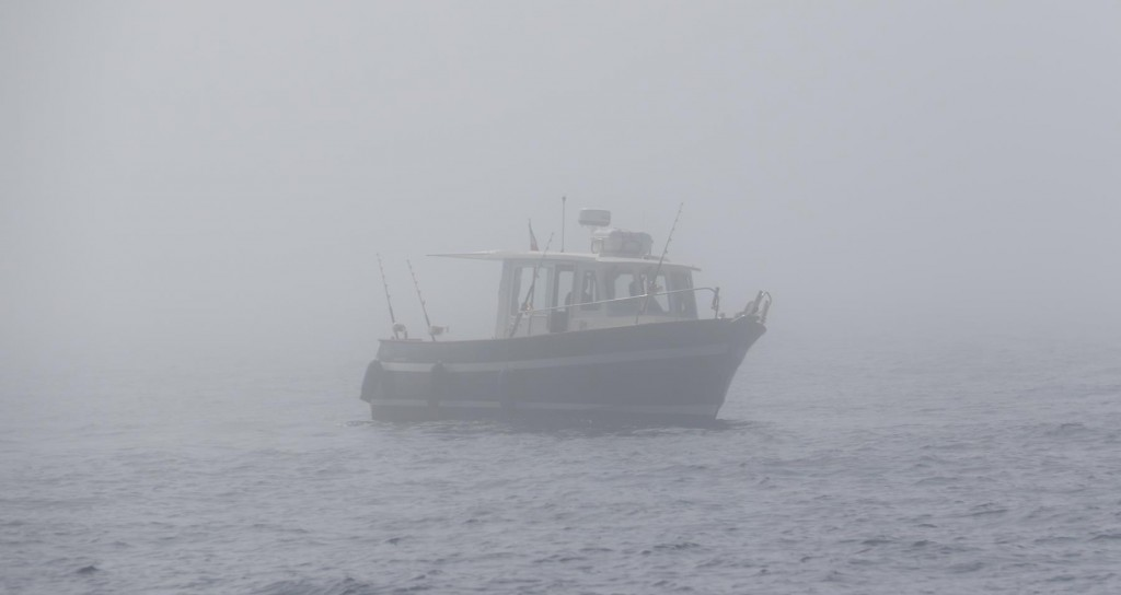Fortunately with radar we felt fairly safe as we were able to spot nearby vessels, of which  quite a few were drifting fishing boats