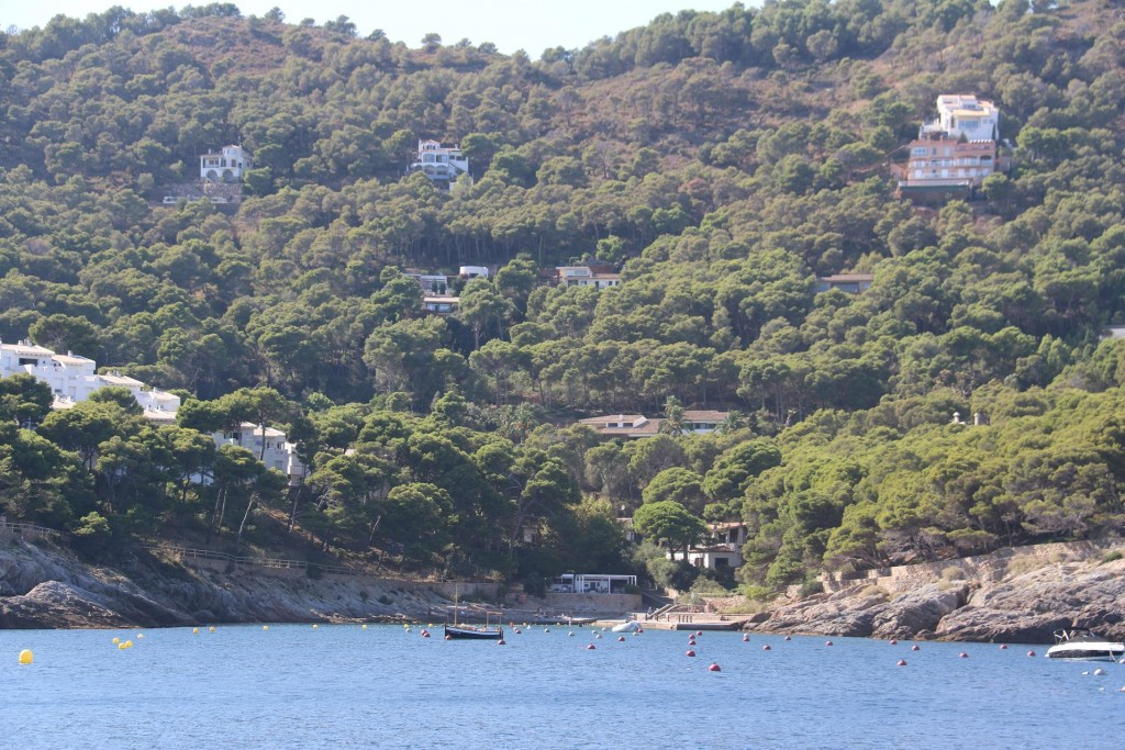 The northern cove of the bay boasts another small beach with dozens of empty moorings!!