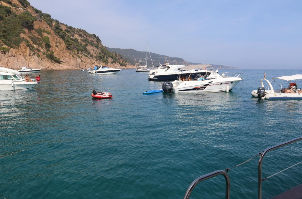 It wasn't long before the bay started filling up with many small boats