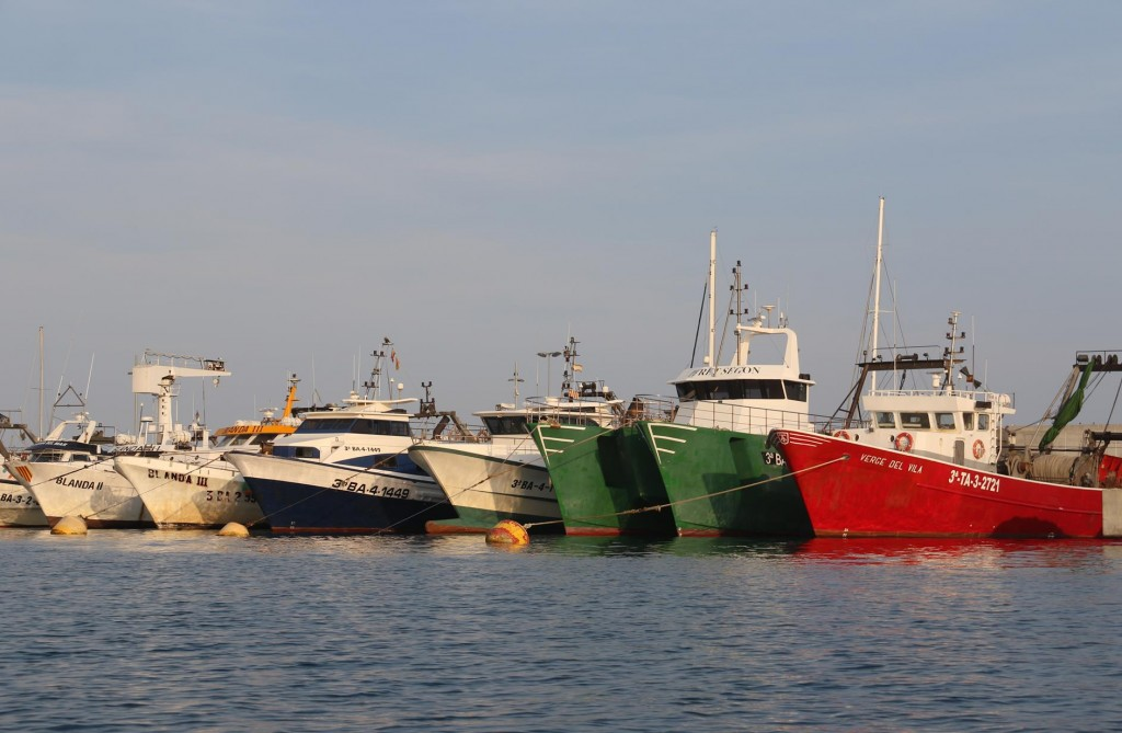 The colourful fishing boat all lined up like soldiers near the entrance to the port